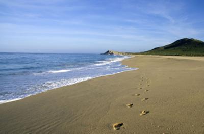Miles of beautiful, deserted beaches