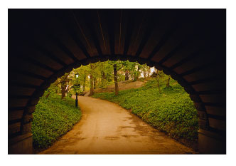 walking trail in NYC central park